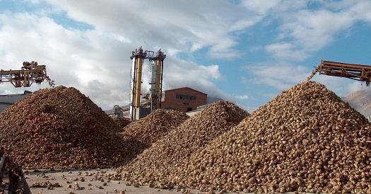 Şeker fabrikası