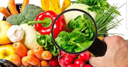 Gıda analiz