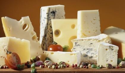 Sütlü ürünler - IMCD