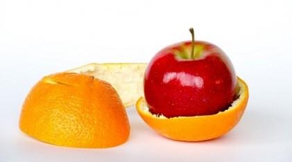 Gıda savunması foto