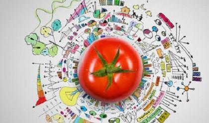 Sürdürülebilir gıda