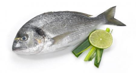 Etiketler balık gıda güvenliği