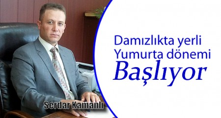 serdar_kamali.jpg